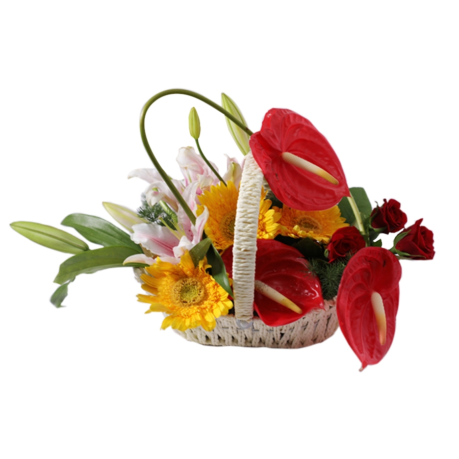 Basket of anthorium ,pink lillies and yellow gerbera