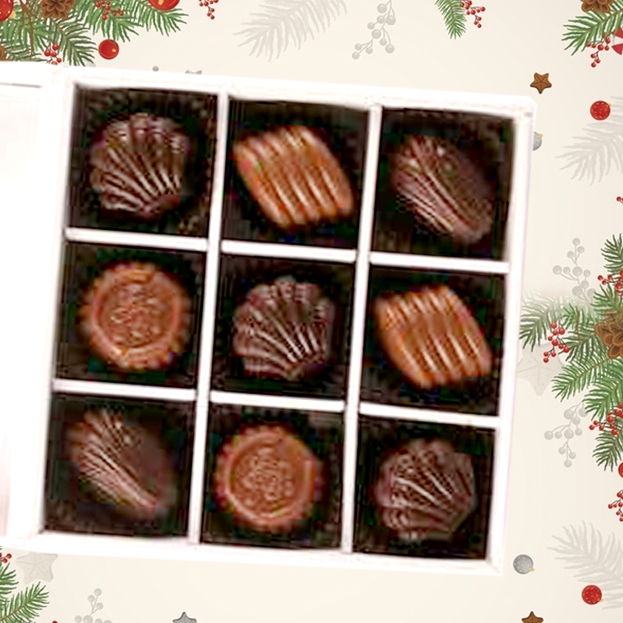 Christmas Box of 9 chocolate pralines
