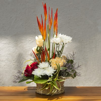 Arrangement of Red and Peach Roses ,White chrysanthemums and B.O.P.in a basket
